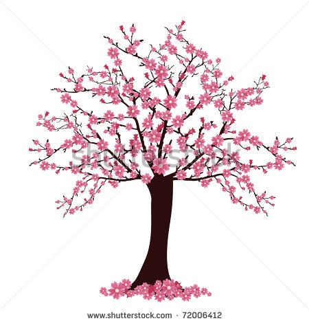 Pretty clipart cherry blossom tree. Drawing cassie s