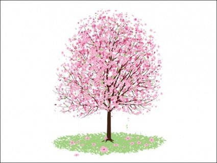 Pretty clipart cherry blossom tree. Free pink and vector