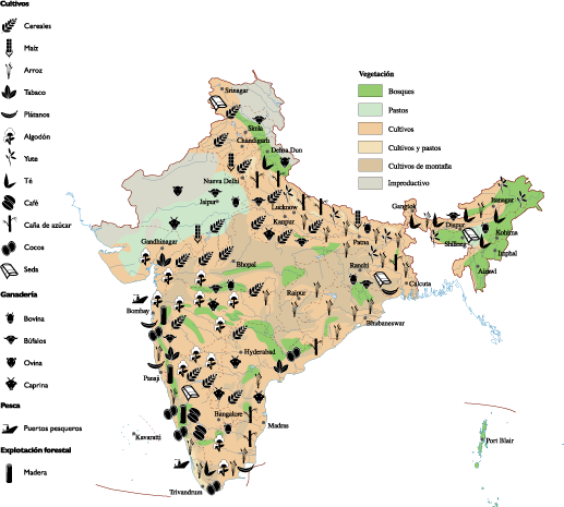 Asia vector south map. India agricultural order and
