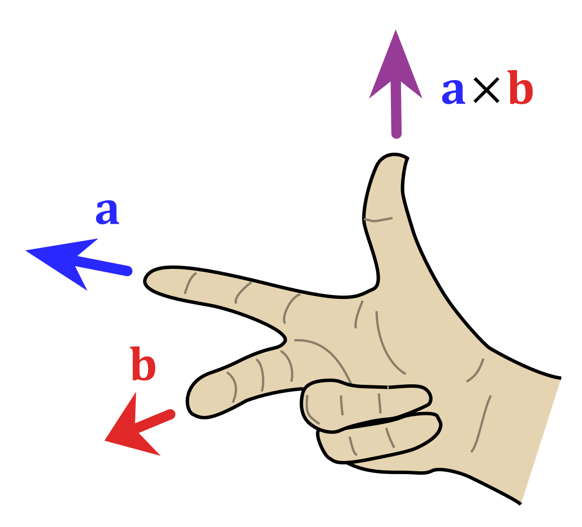 Product vector right hand rule. Wikipedia