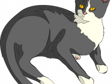 Public domain clipart cat. Free to use clip