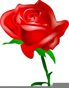 Public domain clipart red rose. Free images at clker