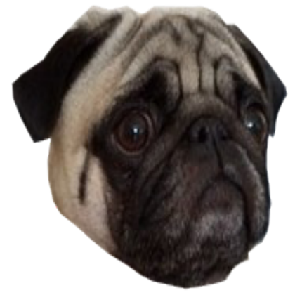 Pug face png. Roblox