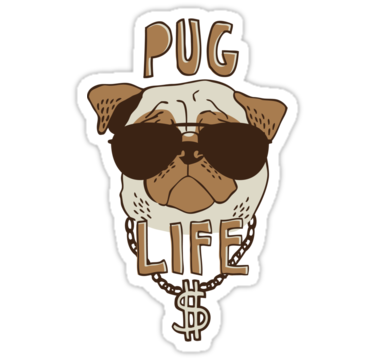 Pug life png. Sticker by amy grace