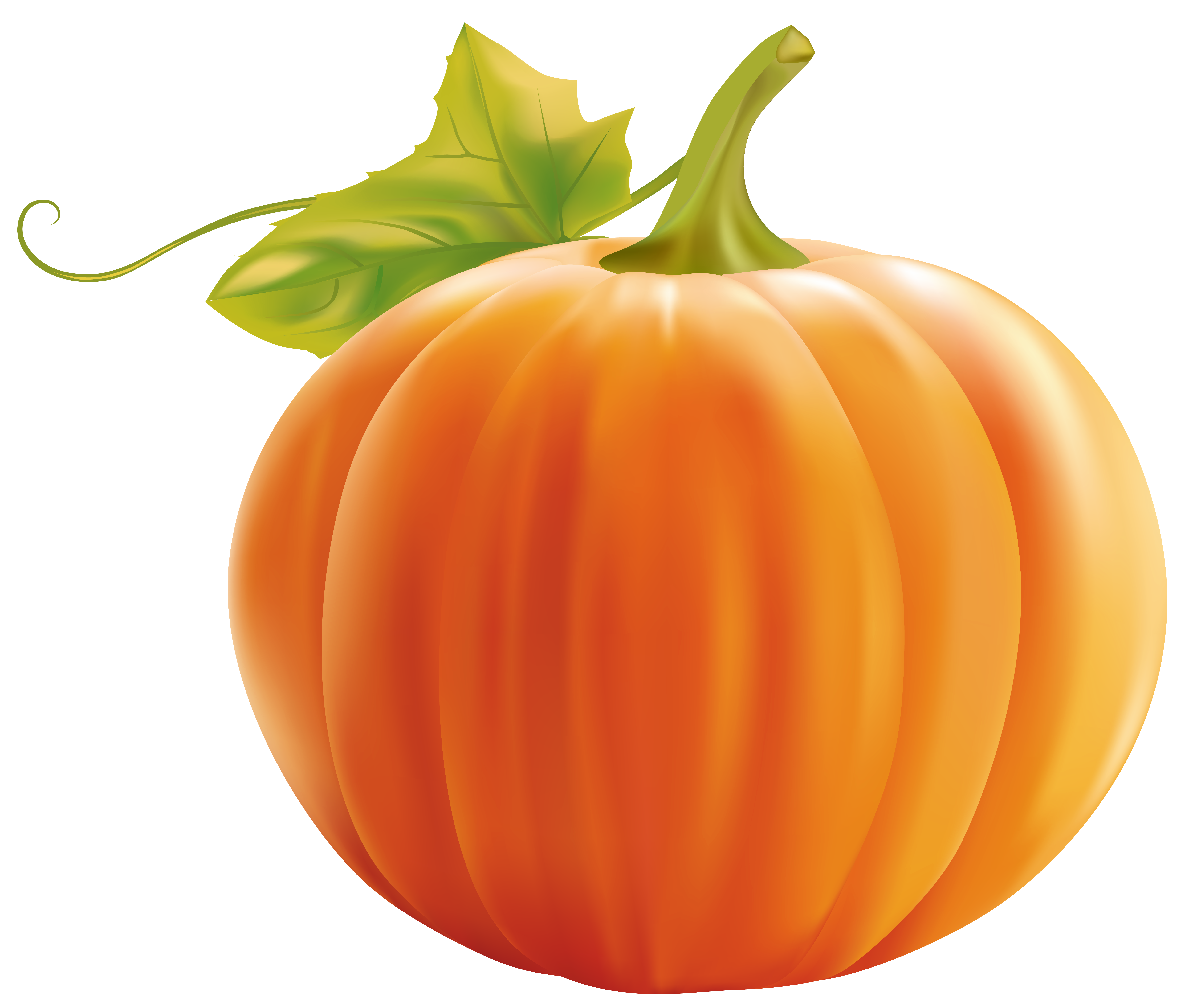 Png image gallery yopriceville. Pumpkin clipart jpg free