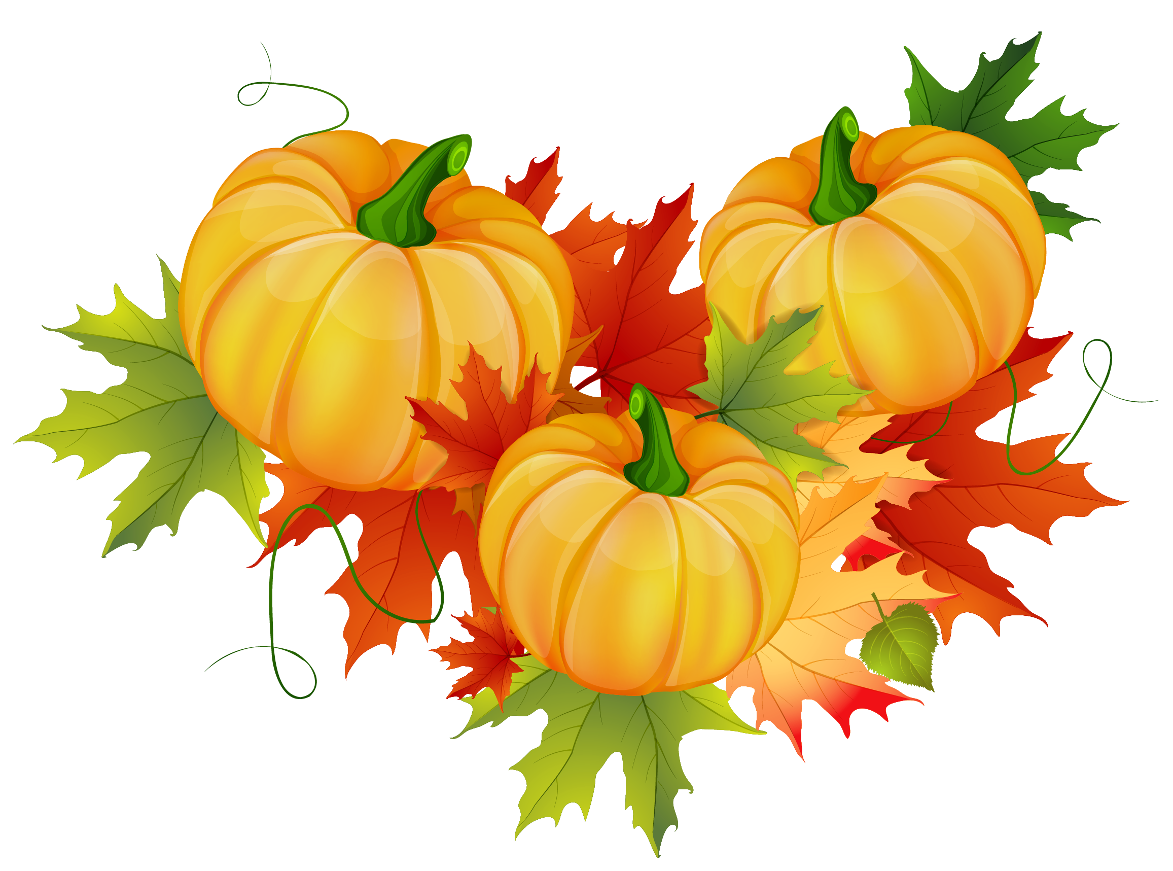 Pumpkin clipart pumpkin decorating. Thanksgiving decoration png pinterest