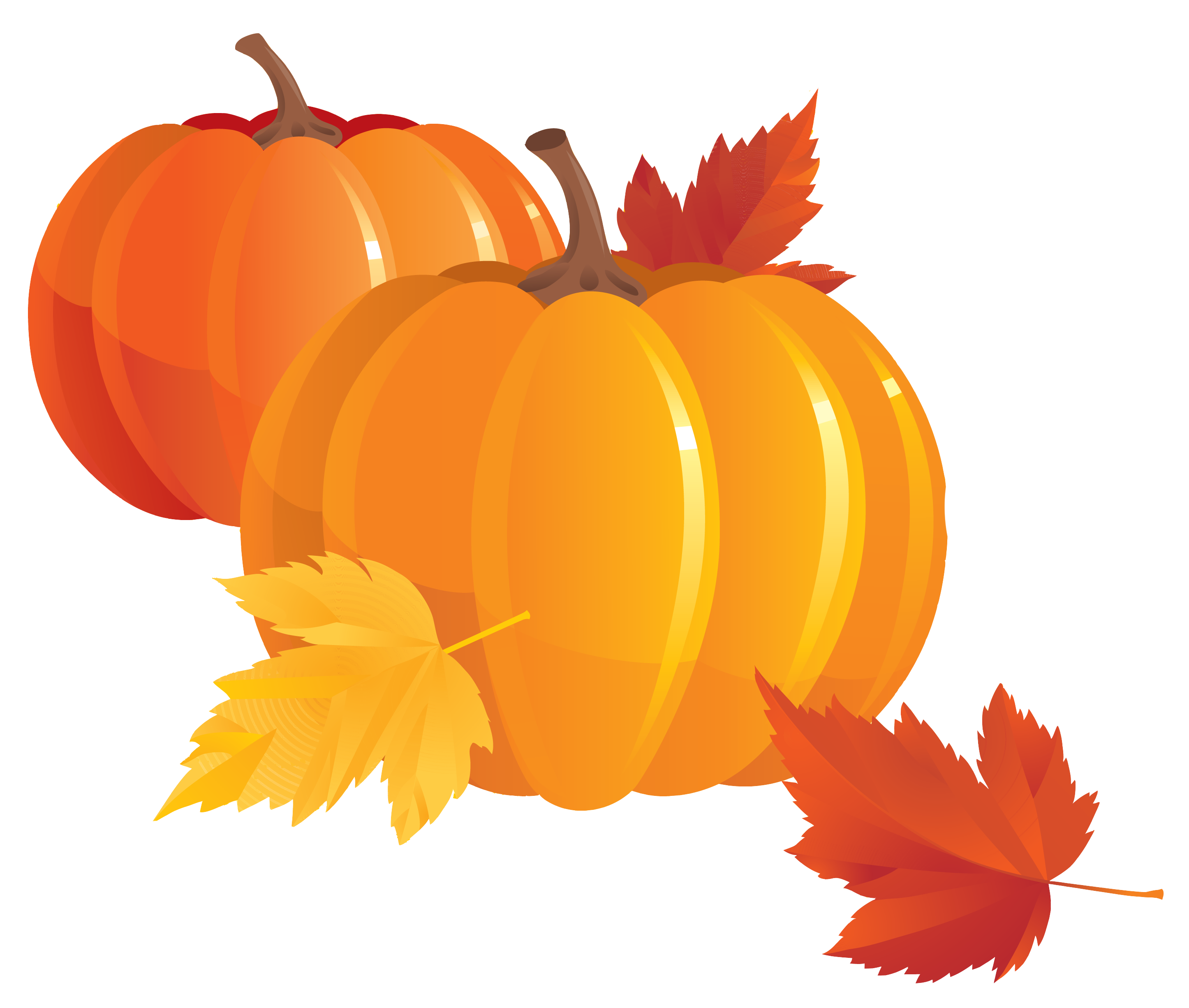 Pumpkin png clipart. Images free download image