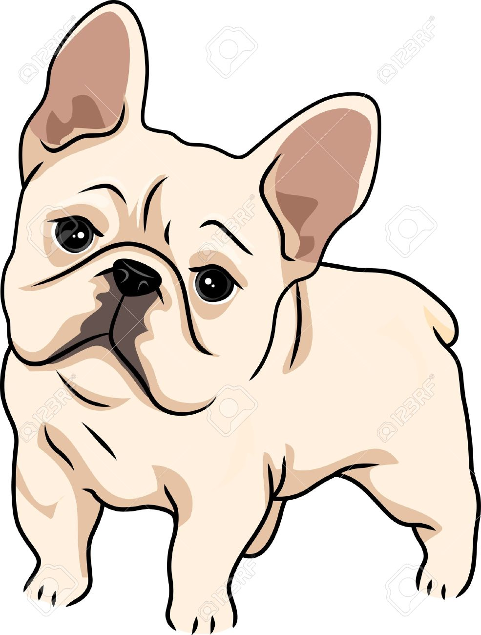 Bulldog clipart bulldog puppy. At getdrawings com free