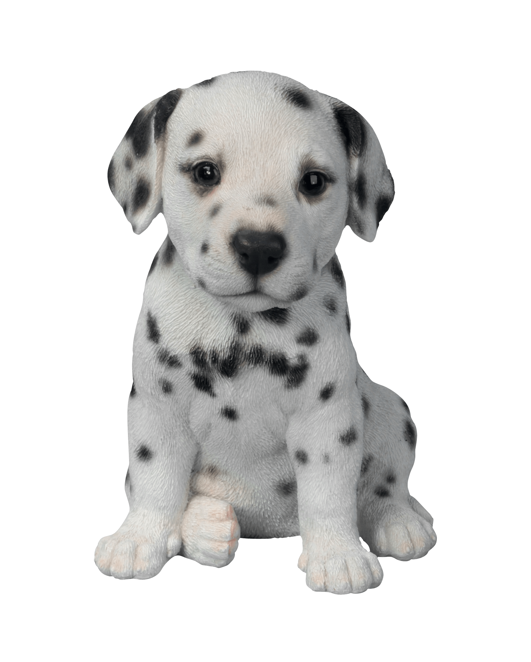 White dog png. Cute puppies transparent stickpng