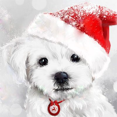 Puppy merry christmas