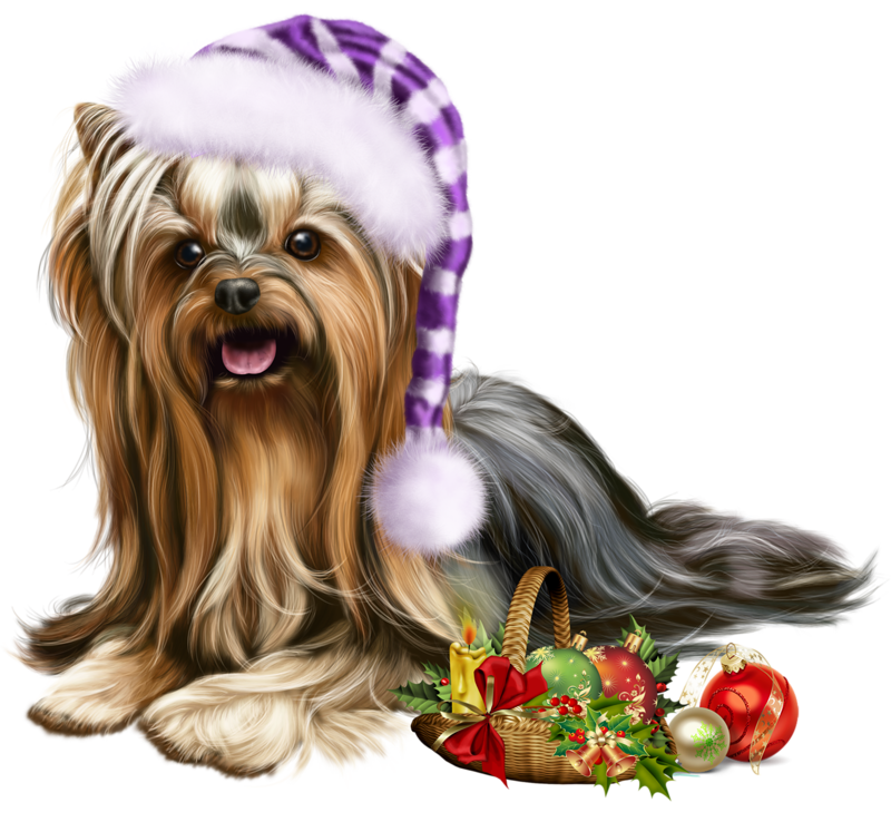 Christmas elf liveinternet . Yorkie clipart clip art royalty free stock