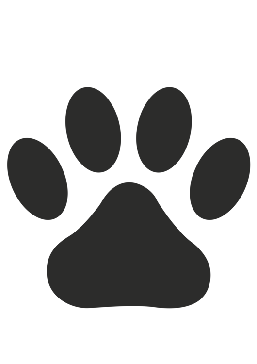 Puppy paw png. Dog daycare cat pet