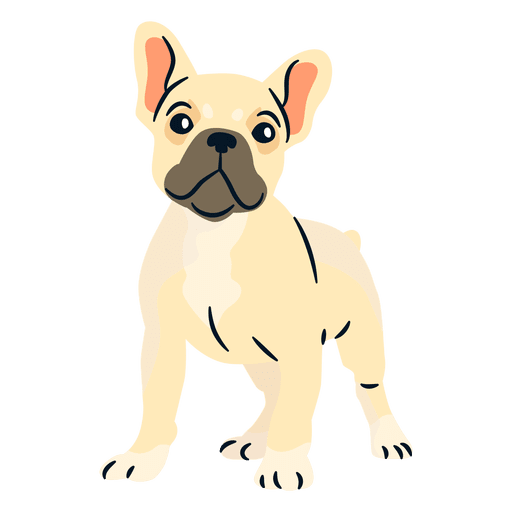 Puppy svg bulldog. French transparent png vector