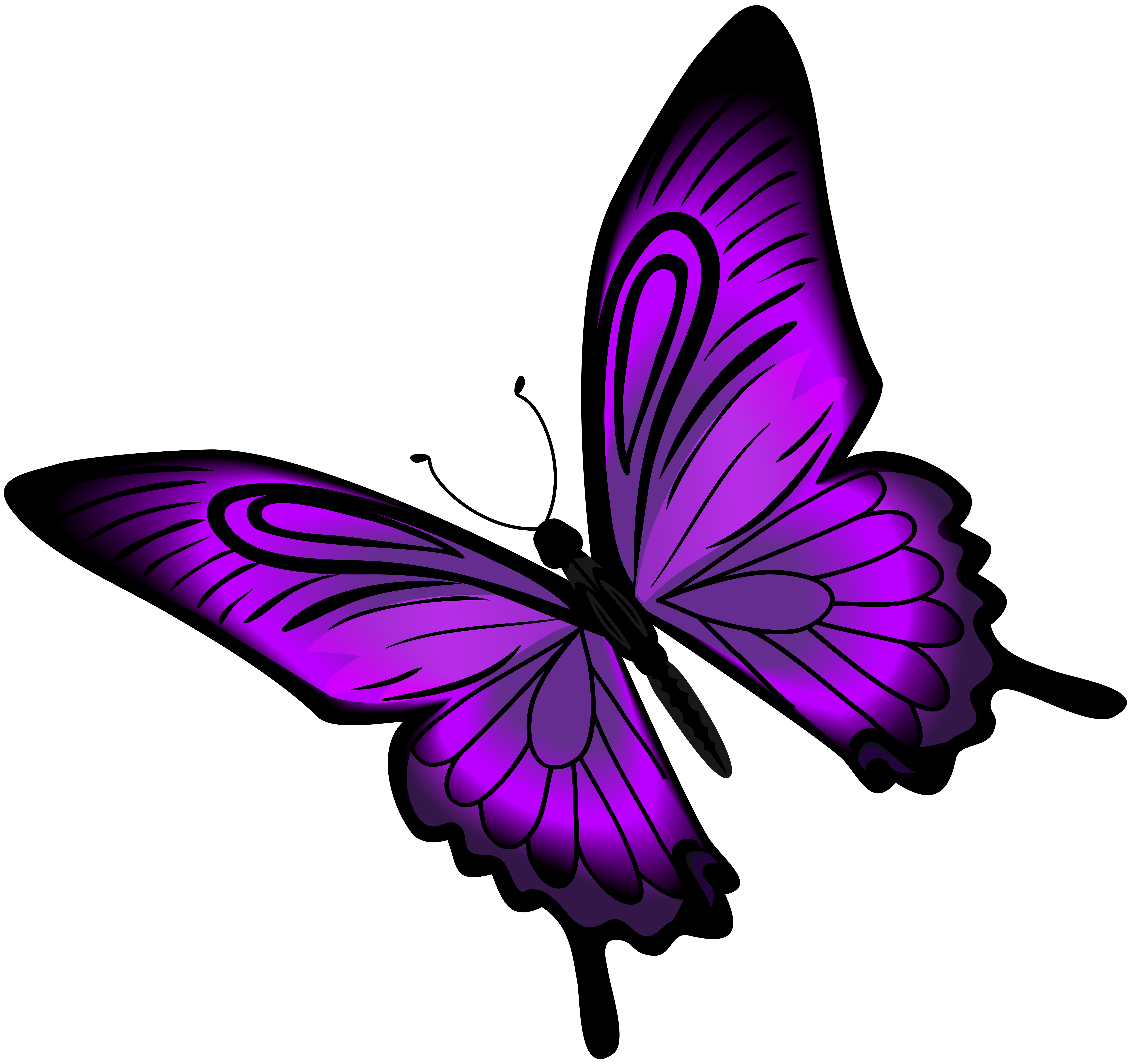 Purple butterfly png. Clip art gallery yopriceville