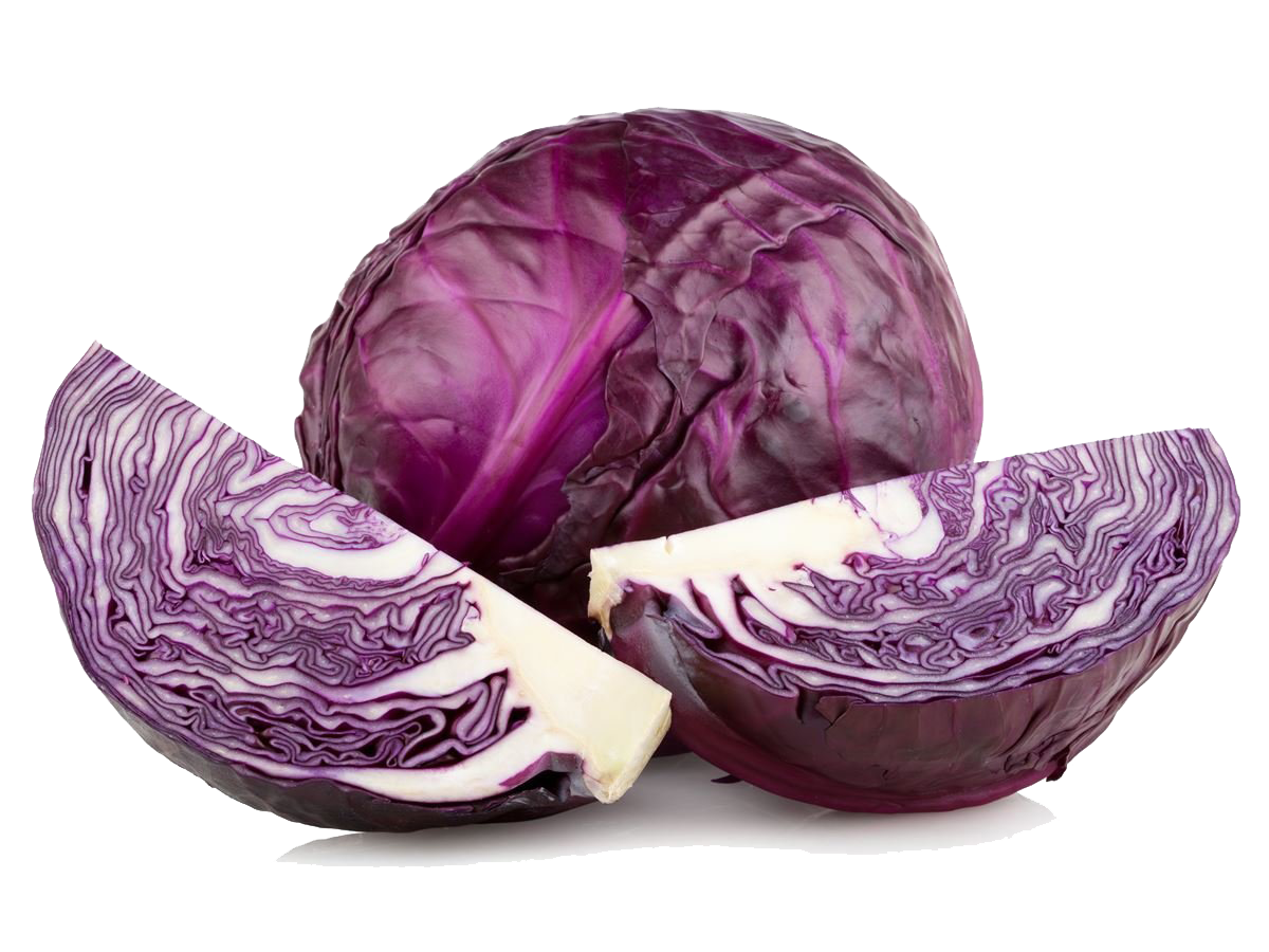 Purple cabbage png. High quality image arts