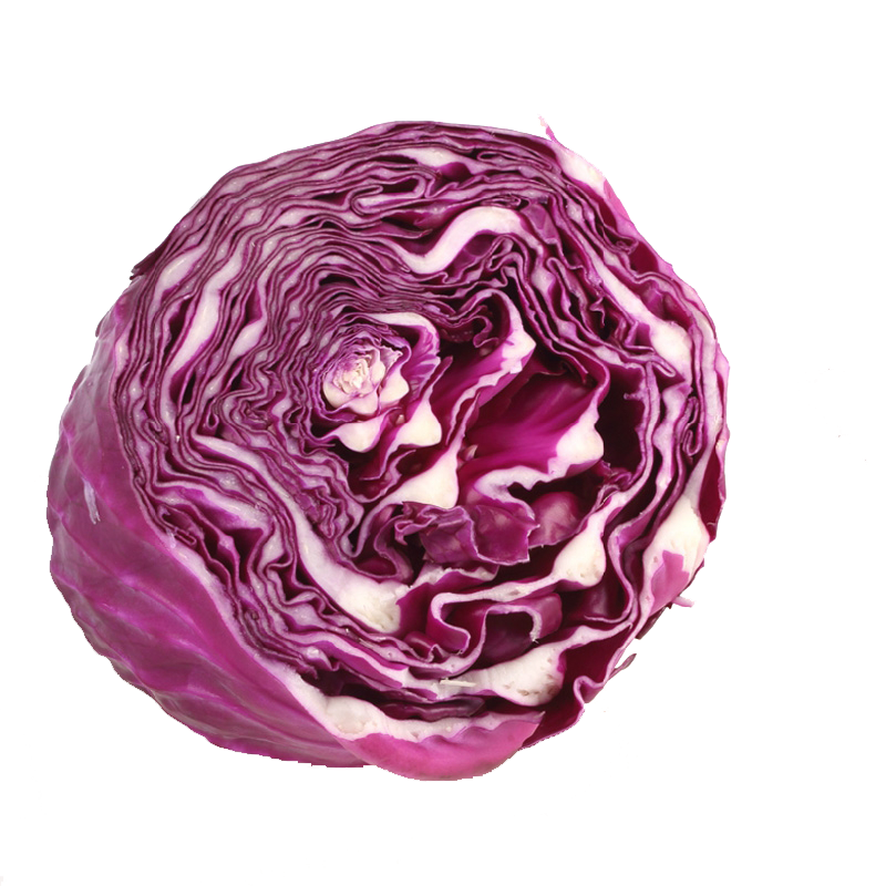 Purple cabbage png. Red vegetable half of