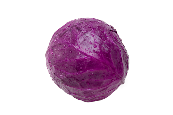 purple cabbage png