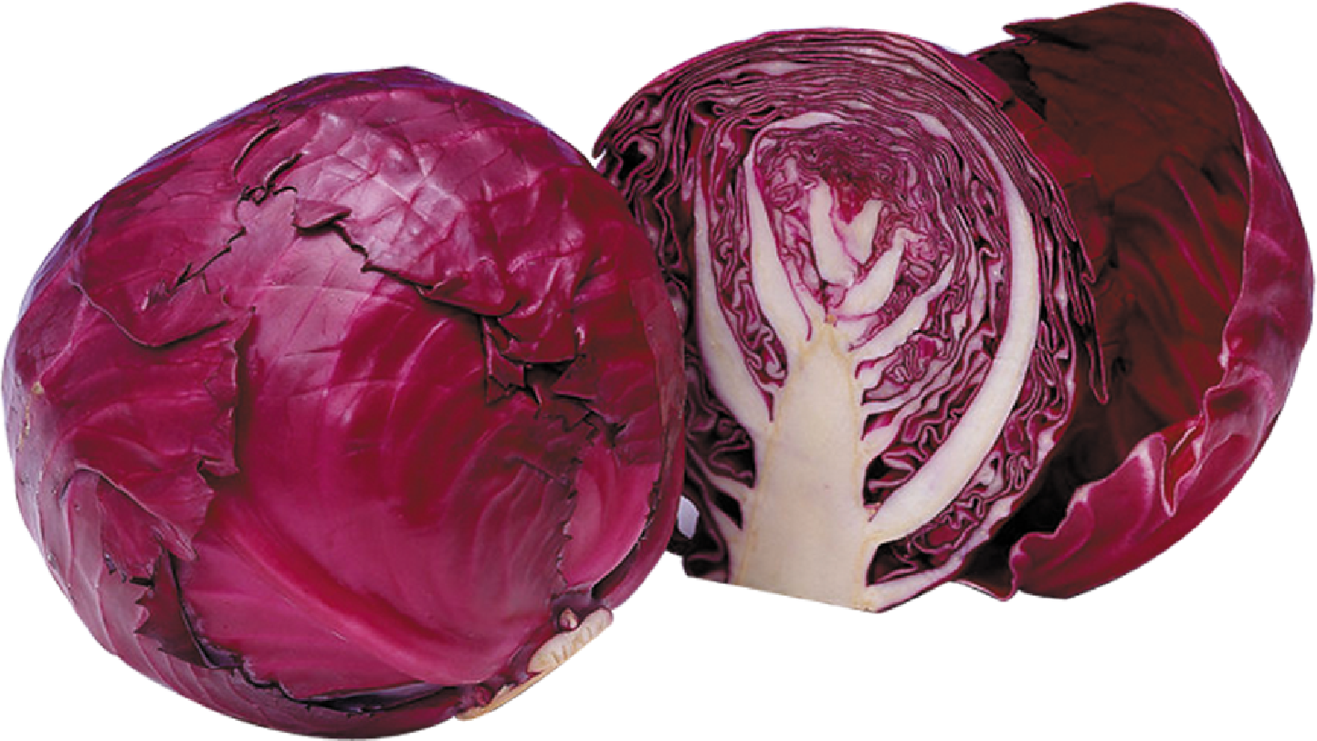 Purple cabbage png. Red broccoli brussels sprout