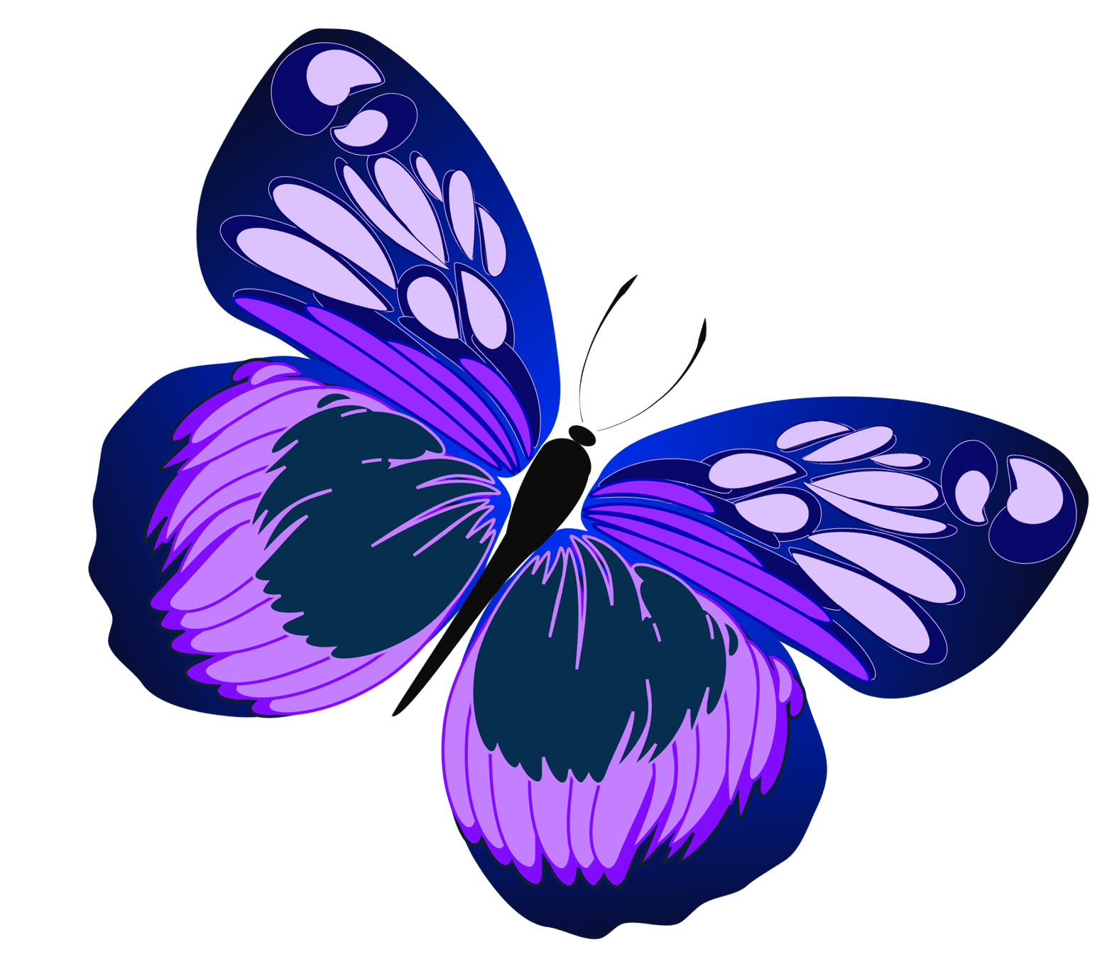 Blue and purple butterfly. Rapper vector stock clip library download