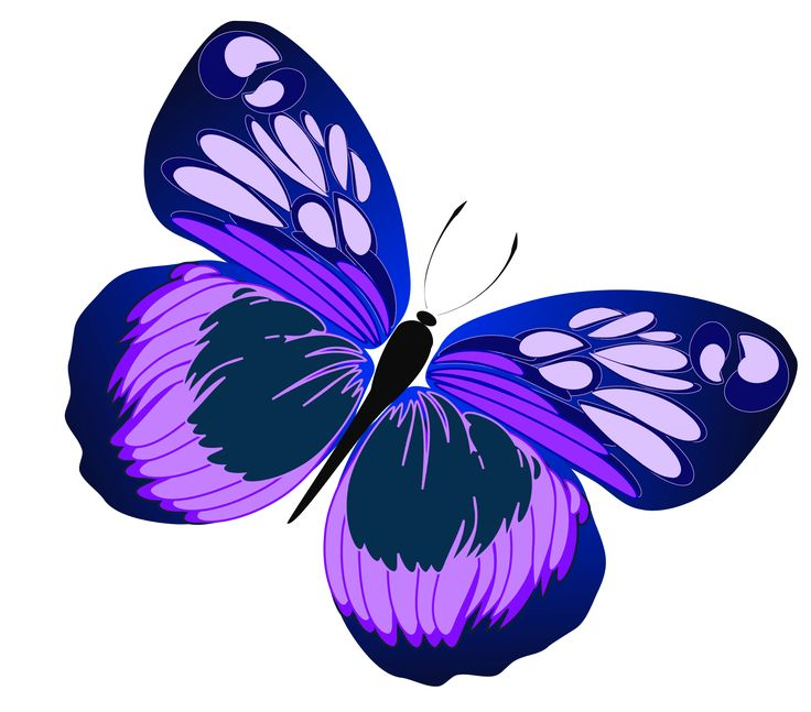 purple clipart butterfly