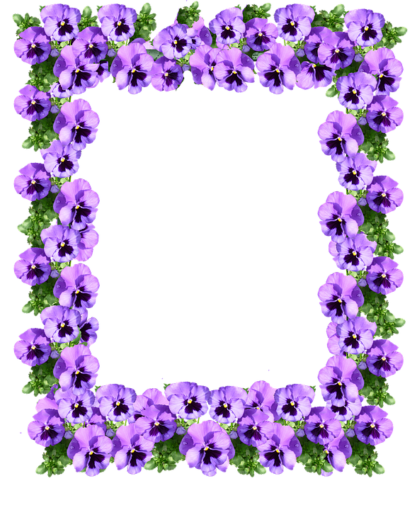 Purple flower border png. Floral pic arts