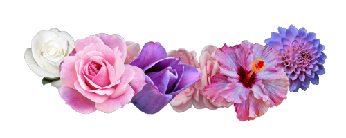 Row of flowers png. Flower crown transparent pictures