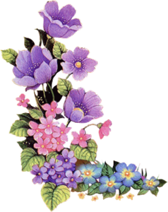 Purple flower png. High resolution clipart free