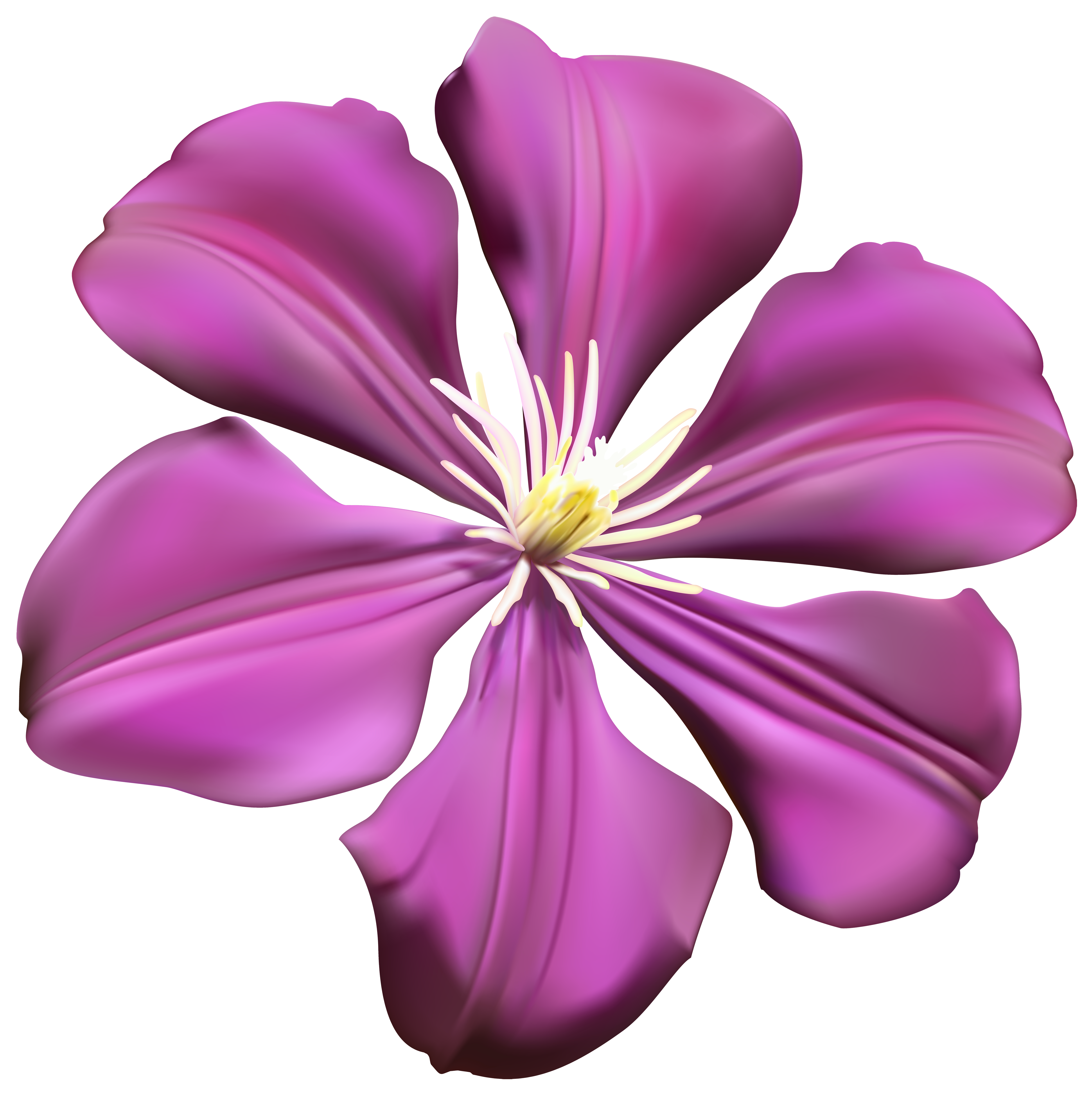 Purple flower png. Transparent clip art image