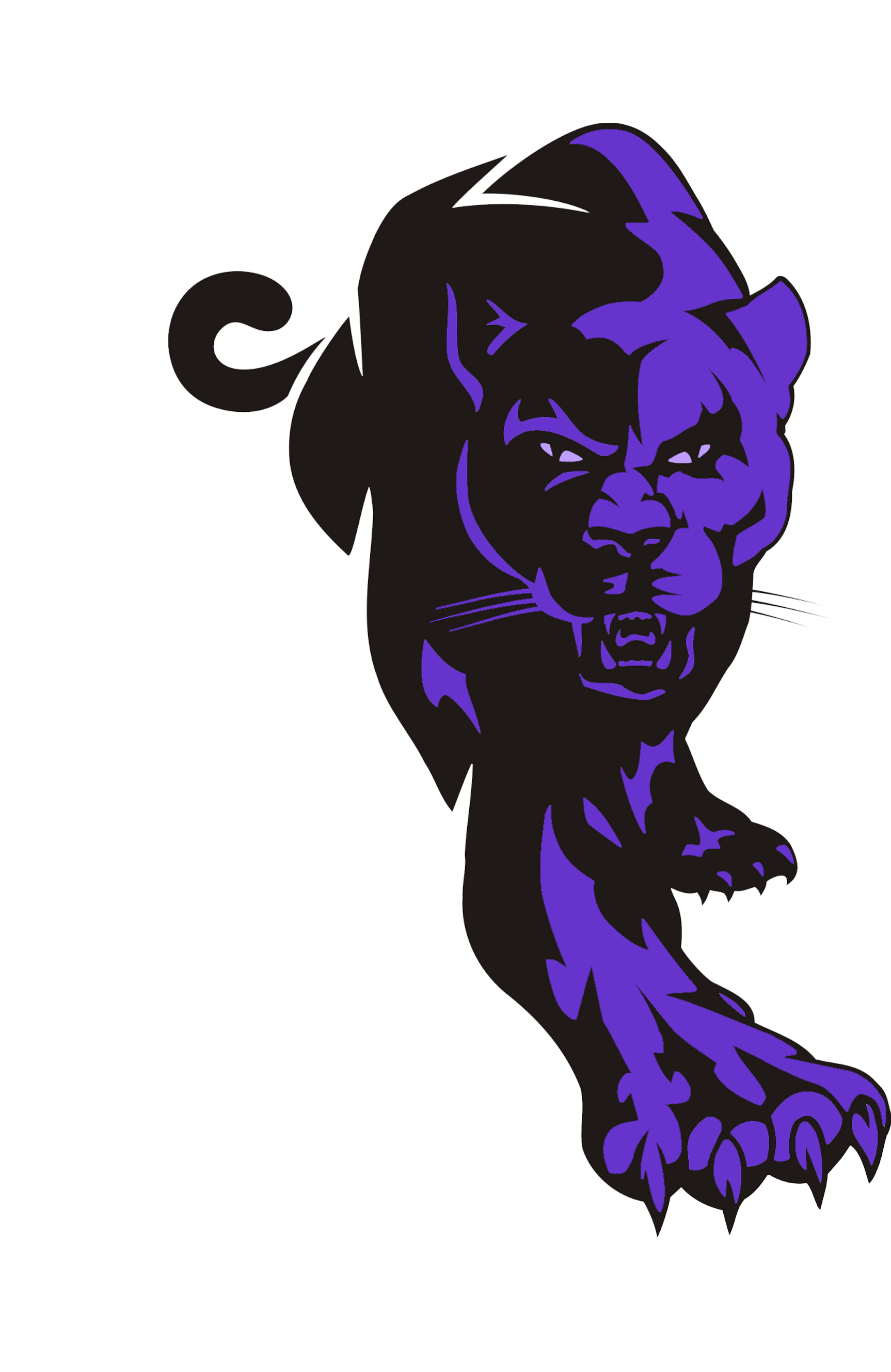 Purple panther png. Clipart frames illustrations hd