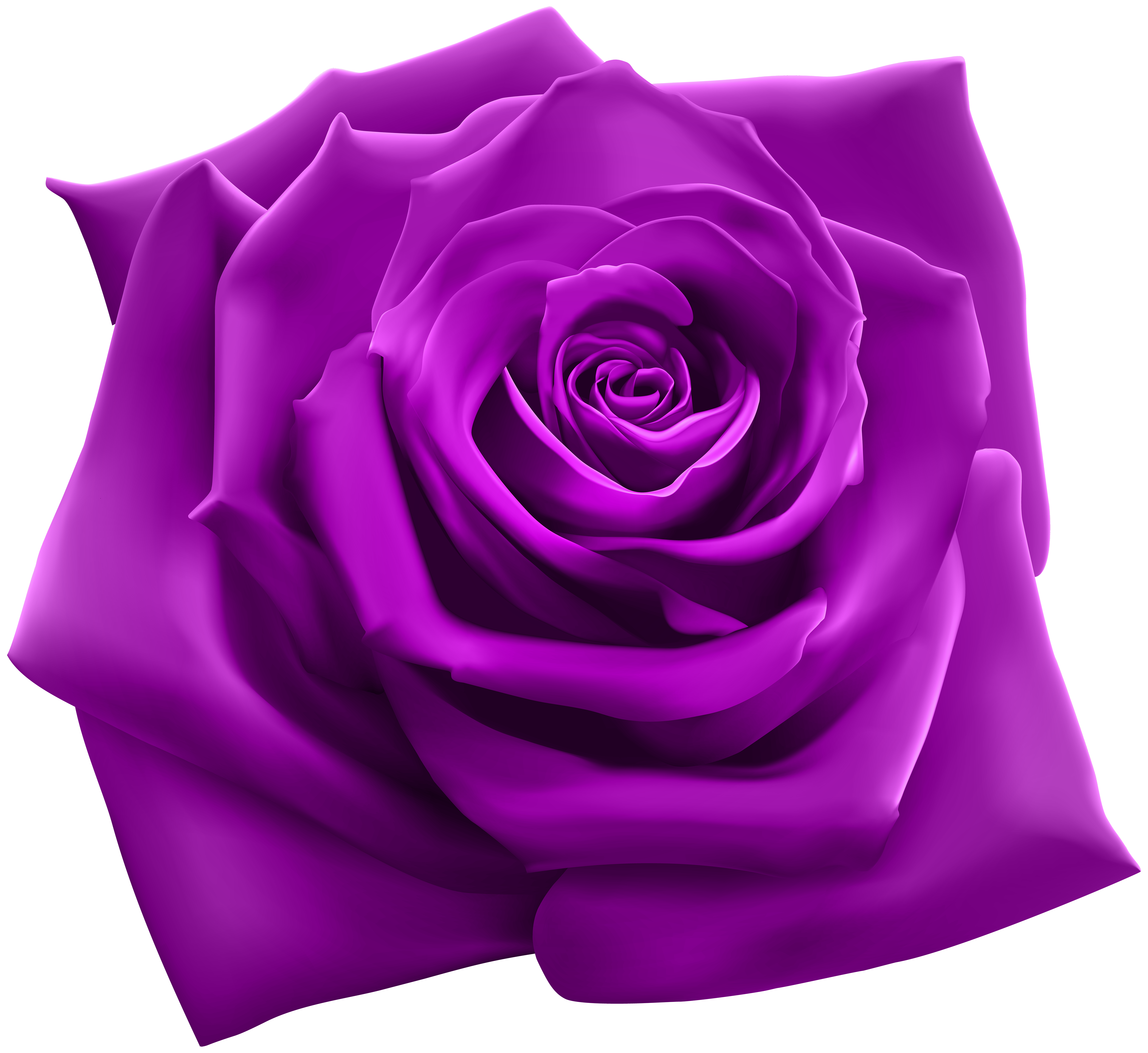 Purple rose png. Clipart image gallery yopriceville