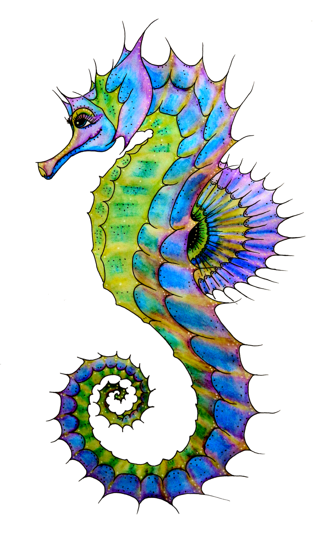 Png hd sea creatures. Drawing seahorse cute vector royalty free download