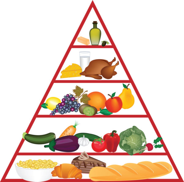 Current food pyramid . Pyramids clipart clip art graphic stock