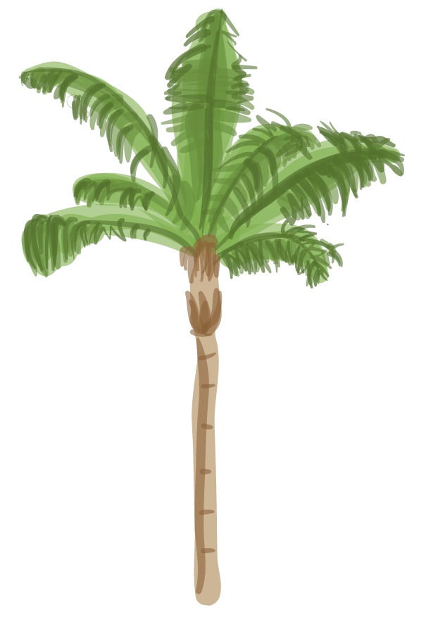 Queen palm png. L a s trees