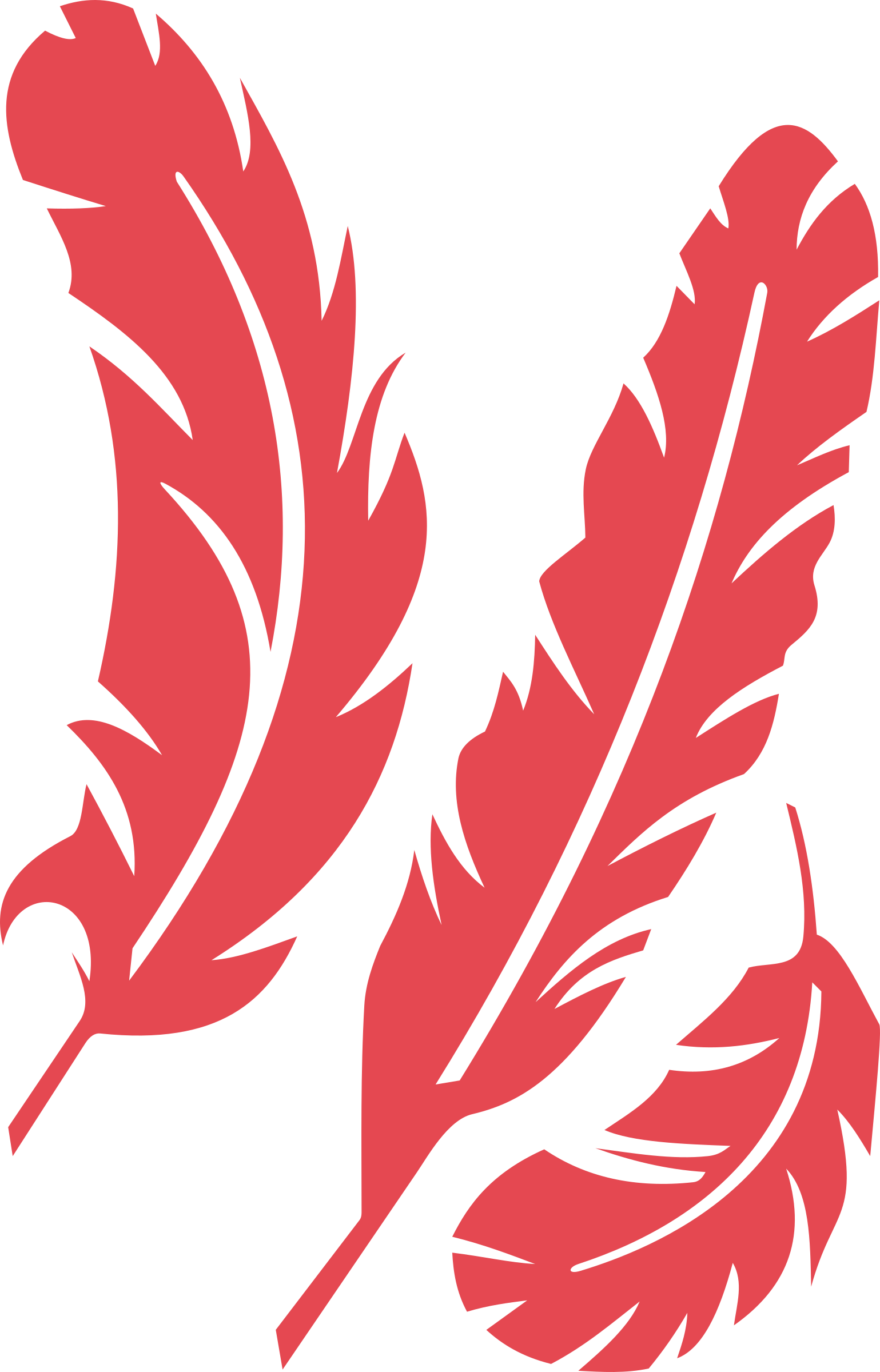 Red feather png. Clipart feathers big image