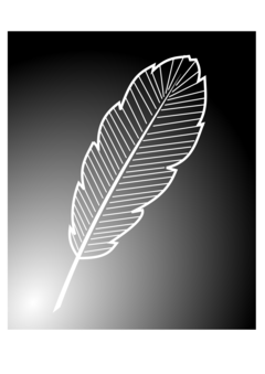 Quill clipart silhouette. Bird feather paper fountain