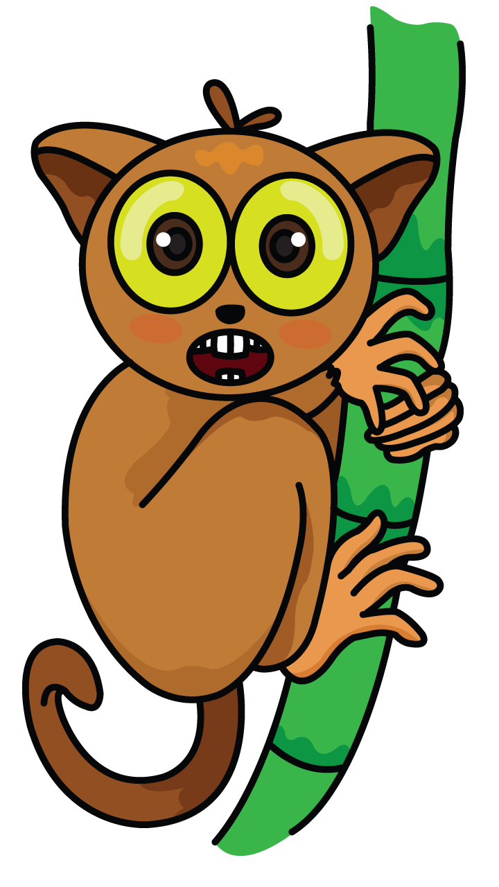Quokka drawing. Tarsier tutorial http drawingmanuals