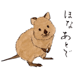 Quokka drawing cute. Adorable japanese calligraphy line