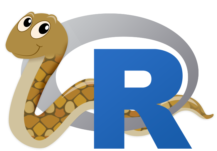 R$ png creation. Interface to python reticulate