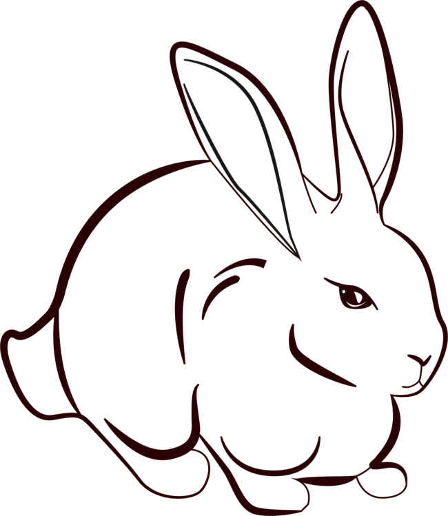 Hares drawing head. Line art rabbit hare