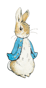 Rabbits drawing. About beatrix potter peter