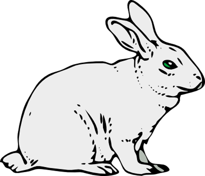 Rabbits drawing. Rabbit monoclonal antibody services