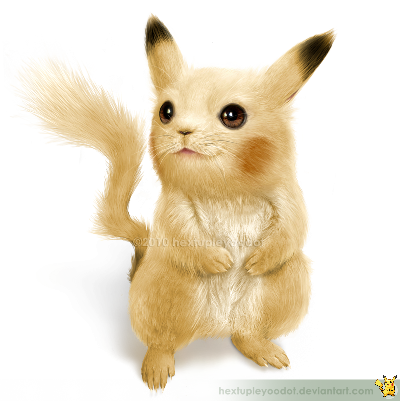 Rabbits drawing realistic. Pokemons brought to