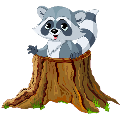 Pin by rj johnson. Drawing raccoon cute forest animal jpg library stock