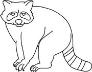Raccoon clipart outline. Search results for clip