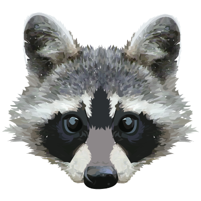 raccoon head png