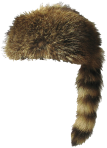 Raccoon hat png. Coon hats tag