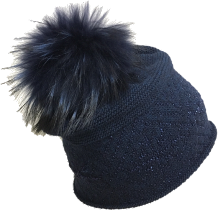 Raccoon hat png. Jj navy with silver
