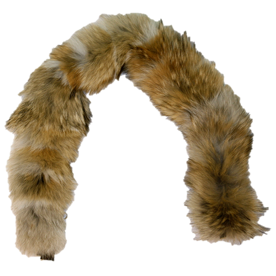 Raccoon hat png. Glacier wear coyote fur