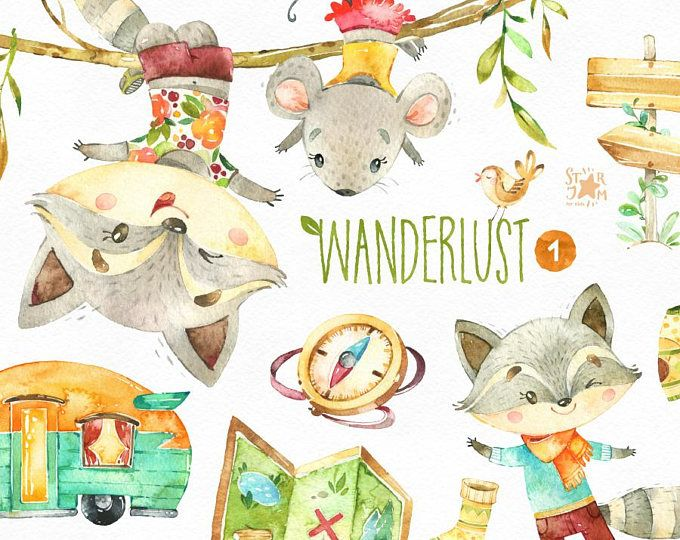 Racoon clipart animal head. Wanderlust watercolor animals mouse