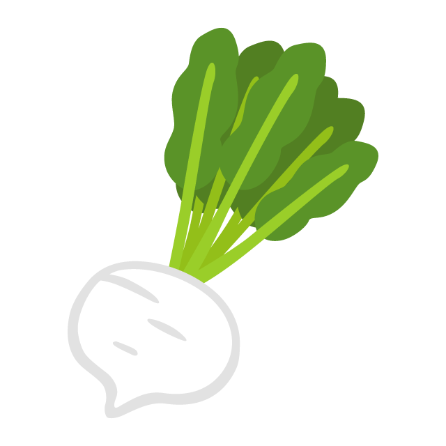 Radish vector turnip. Free png and picaboo